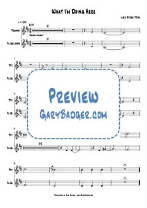 Lake Street Dive - What I_m Doing Here - Trumpet