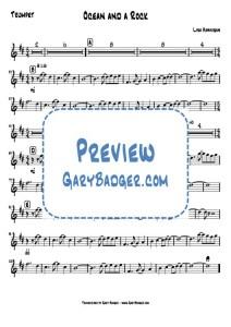 Lisa Hannigan - Ocean and a Rock - Trumpet