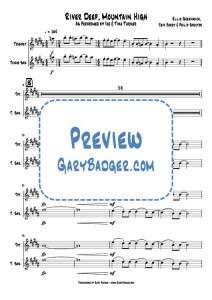 Tina Turner - River Deep, Mountain High -Trumpet & Tenor Sax