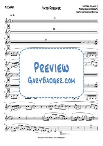 Matthew Halsall & The Gondwana Orchestra - Into Forever - Trumpet